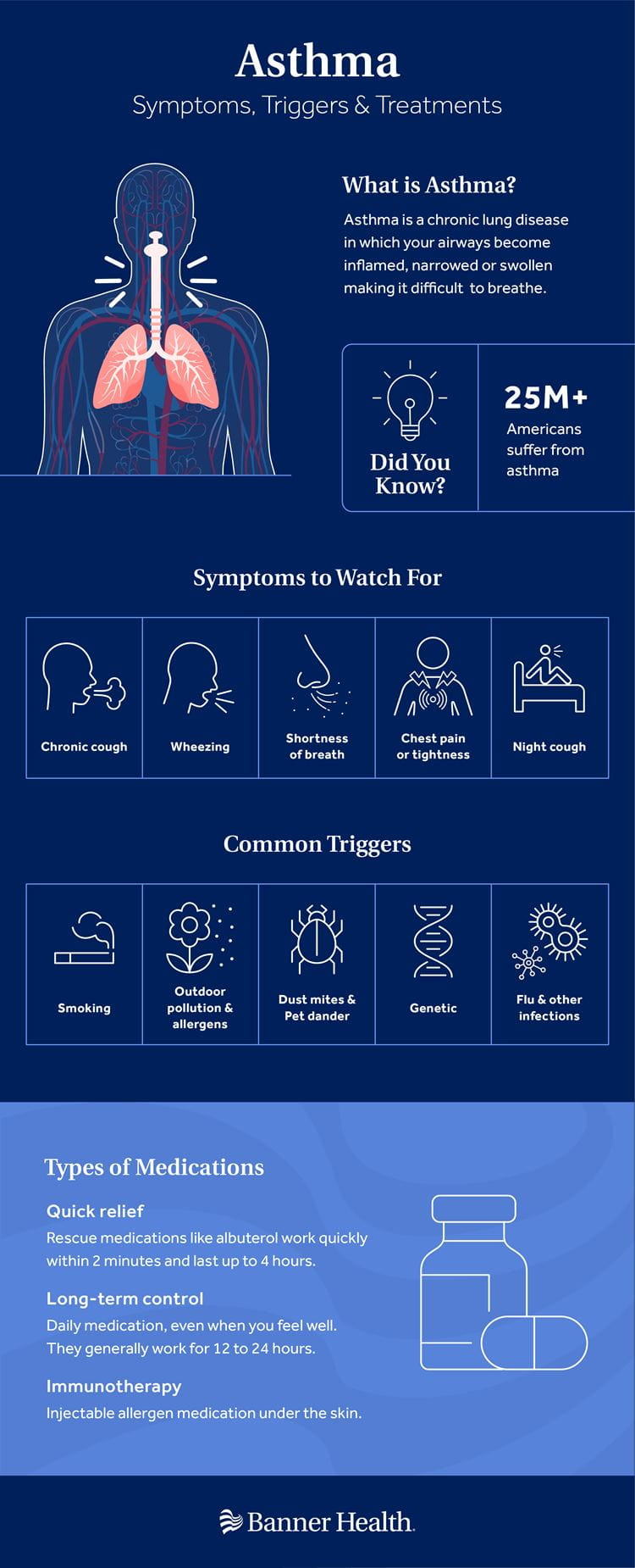 Asthma Symptoms Triggers Treatments Infographic