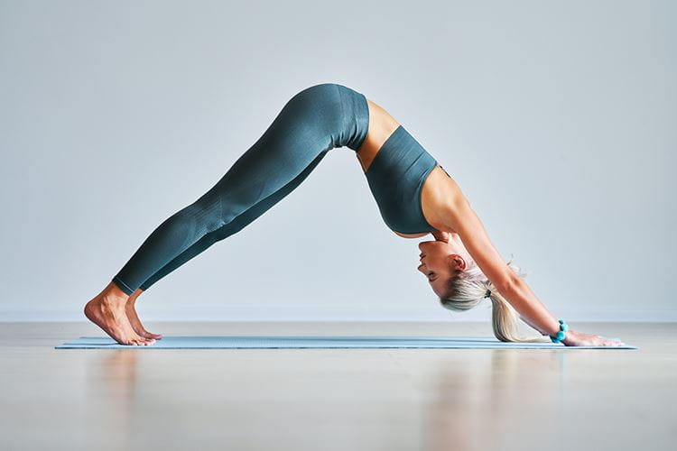 03 Inset Downward Dog Yoga Pose